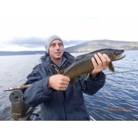 Trout fishing Tasmania